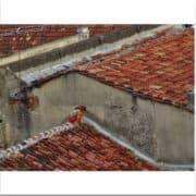 La chica en el techo