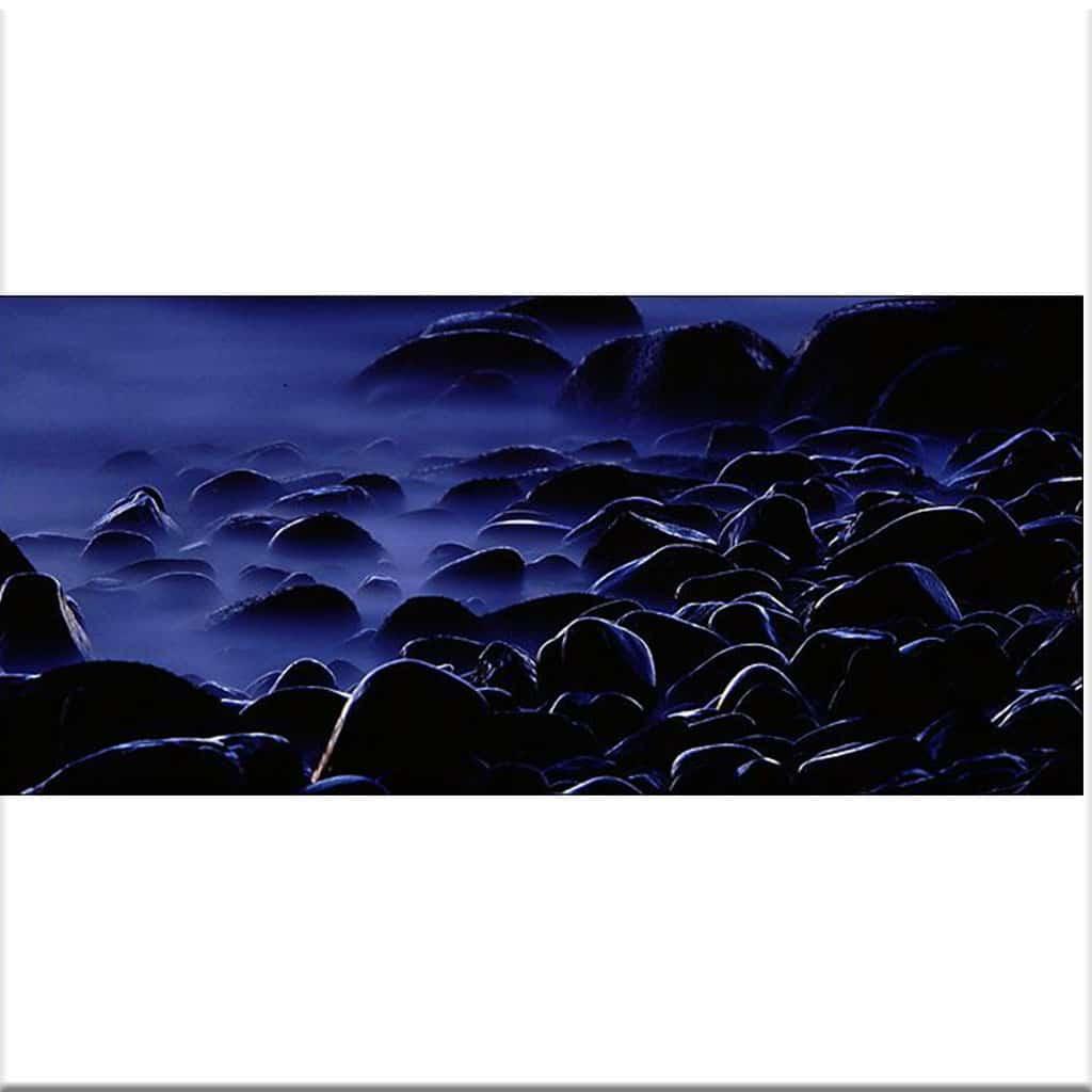 Kust Tylösand sten 4